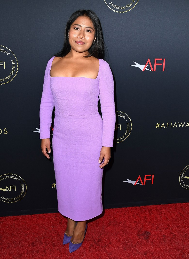 19th Annual AFI Awards - Arrivals